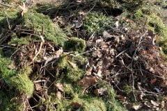Afval afvoeren groenafval tuinbags